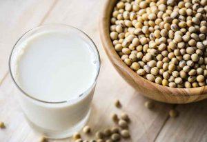 high protein diet plan list